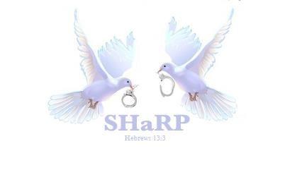 Safe Haven Re-Entry Program (SHaRP)